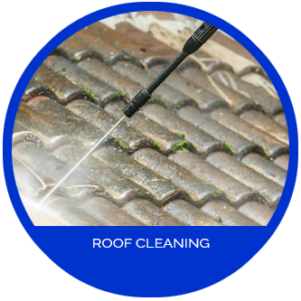 Jun S Mold Remediation Amp Roof Cleaning Services In Nj