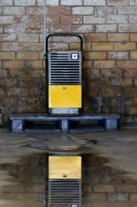 5 Ways to Minimize Moisture in Your Basement