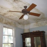 Middlesex County Mold Consulting